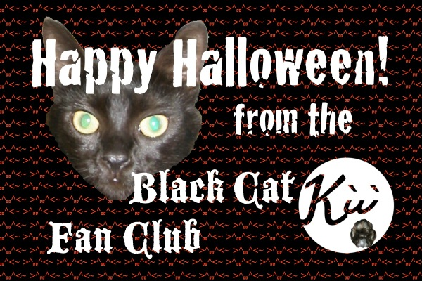 Happy Halloween! Be safe & protect black cats, too >^,,^<